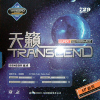 Friendship/729 SP Transcend ping pong rubber