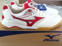 Mizuno Wave Drive 5 Shoes